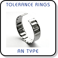 AN tolerance ring